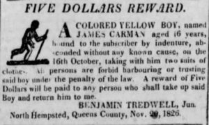 Newspaper Advertisement, Dr. Benjamin Tredwell, Long-Island Star, 1826.